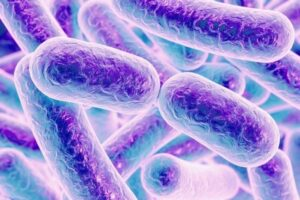 Bacterial Control in Water Treatment   Membracon   Wolverhampton West Midlands